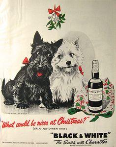 Original vintage magazine ad for Black & White Scotch featuring the ...