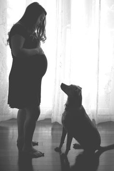 St. Louis maternity photography, maternity   pose, maternity photos with dog, pregnancy, Charis Rowland   Photography