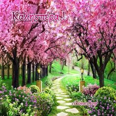 Us 885 41 Off Beibehang Custom 3 Photo Wallpaper Cherry Blossom Forest Garden Path Natural Scenery Wall Papers Home Decor Papel De Parede In Tree Garden Wallpaper, Tree Wallpaper Mural, Photo Wallpaper, Landscape Wallpaper, Forest Garden, Garden Trees, Garden Path, Garden Mural, Cherry Blossom Tree