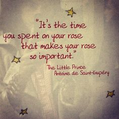 The time you spent on your rose...