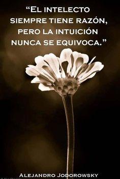 Intelecto vs. intuición