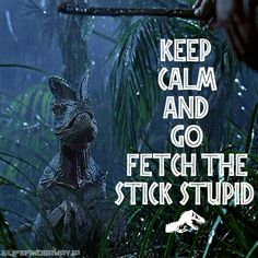Keep calm and go fetch the stick stupid Jurassic Movies, Jurassic Park Series, Jurassic Park 1993, Jurassic Park World, Jurassic World Fallen Kingdom, The Lost World, Falling Kingdoms, Prehistoric Creatures, Pixar Movies