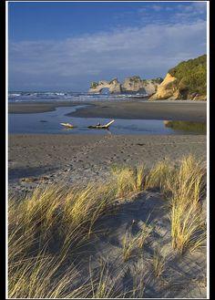 Wharariki Beach. 20 min walk from carpark or 1 hr walk across sand dunes from Takaka. Caves and islets.