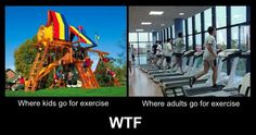 I would totally exercise more if we had playgrounds for adults.