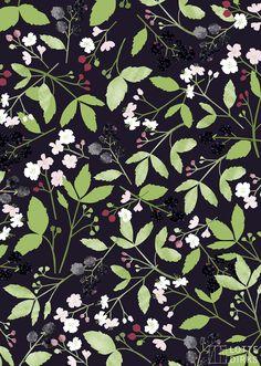 blackberries - GREENHOUSE prints & illustrations by Lotte Dirks