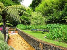 Poca de beija, Furnas, Sao Miguel, Azores Natural hot spring. This place now charges 2 euros to get in, its so worth it.