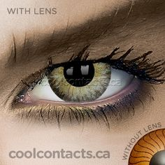 4413c271c39a Dark Green Contact Lenses - coolcontacts.ca