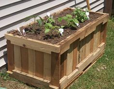 Planter made out of pallets!!  Great idea!