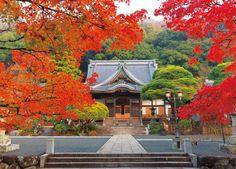 修善寺―紅葉に染まる― Shuzenji Shizuoka Japan