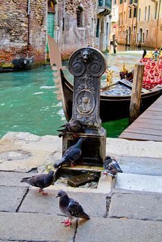 Drinking Fountain in Venice