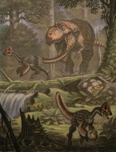 Albertosaurus and Chirostenotes by Andrey Belov Prehistoric Wildlife, Prehistoric World, Prehistoric Creatures, Dinosaur Fossils, Dinosaur Art, Dinosaur Sketch, Alien Plants, Dinosaur Images, Spinosaurus