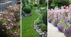 Niezwykłe kompozycje w Twoim ogrodzie - te kwiaty wyglądają bosko! #kwiaty #kompozycje #rośliny #barwne #kolorowe #sezonowe