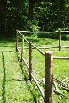 If you told me a few years ago I'd be building rustic fencing and growing tomatoes I'd call you loco, but here we are. Last week we plan...