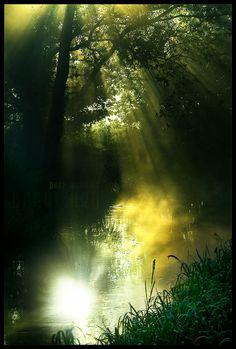 pure morning by werol.deviantart.com