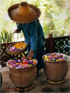 I love the idea of floating flowers and this is an easy way to approach that. Japanese Flower Garden.