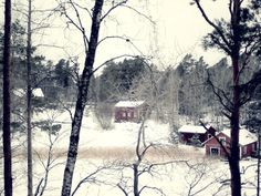Winter view, Fishing farm at the archipelago of Finland