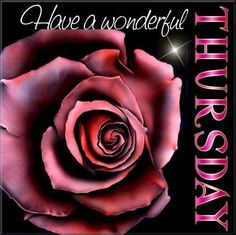 Have a wonderful Thursday quotes quote days of the week thursday thursday quotes happy thursday Thursday Pictures, Thursday Quotes, Monday Quotes, Its Friday Quotes, Thursday Greetings, Thankful Thursday, Happy Thursday, Happy Day, Tuesday