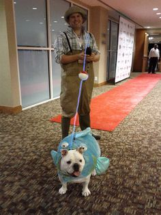 Pudgie at the #BarkWorld HOWL-O-Ween Pawty. Adorable!!