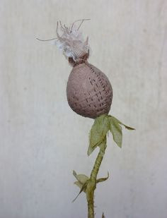 a cloaked bishop lilly and other stitched botanicals – ann wood handmade Clay Flowers, Fabric Flowers, Mister Finch, Floral Fascinators, Mushroom Crafts, Ann Wood, Bedroom Crafts, Cotton Decor, Sewing Toys