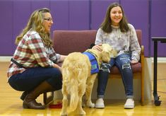 Northwestern Middle School has introduced Rocky the Golden Retriever as its first ever facility dog. Teacher Problems, Middle School Teachers, Reading Fluency, Special Education Teacher, Reading Time, Local News, The Middle, Student Work, Life Skills