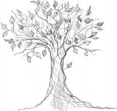 drawing of tree - Google Search