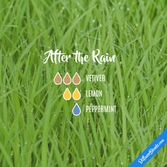 After the Rain - Essential Oil Diffuser Blend