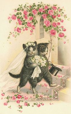 Bride and groom cats vintage postcard