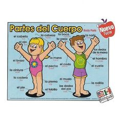 Cute picture naming the parts of the body in Spanish