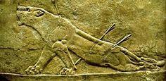RELIEVE ASIRIO. La civilización asiria se desarrolló hace unos 3.000 años en la región de la Alta Mesopotamia que hoy se reparten Siria, Iraq y Turquía. Además de su furor guerrero pasó a la historia por sus grandes creaciones artísticas, en especial sus fabulosos relieves que decoraron templos y palacios con escenas de caza, grandes batallas y la exaltación de la figura de su rey.