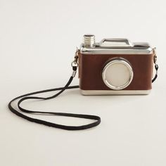 One of my favorite discoveries at WorldMarket.com: Snap Shot Camera Flask