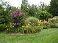 We have over 50 varieties of daylilies--all sizes, shapes, and colors. In addition, my husband created a lovely Japanese garden in honor of our stay in Okinawa. Enjoy!