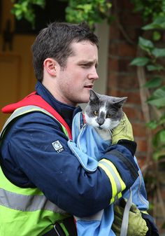 Rupert the cat was rescued from rising flood waters near Oxford, England by fireman Oliver Thompson.