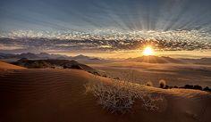 Nachruf auf Kanaan wurde in Namibia, Kanaan aufgenommen und hat folgende Stichwörter: Namibia, Namib-Naukluft-Park, Kanaan.