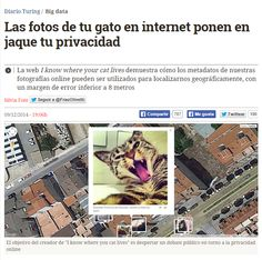 Las fotos de tu gato en internet ponen en jaque tu privacidad / @diarioturing | #readyfordigitalprivacy
