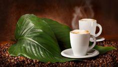 Напитки Кофе Зерна Листья Чашка Еда