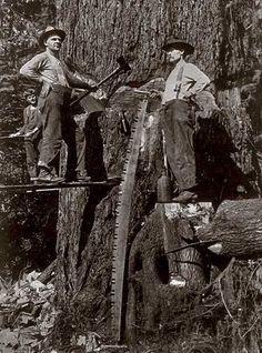 Loggers near New Palmer in 1912