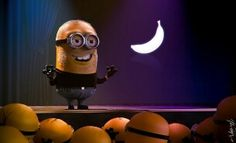 Different Avatars of minions in a form of a list consisting of 32 images. Minions are as movie characters and real-life legends. It's simply a Minions Mania Hd Wallpaper Desktop, Disney Wallpaper, Cartoon Wallpaper, Wallpapers, Mobile Wallpaper, Minions Images, Minion Pictures, Daft Punk, Clint Eastwood