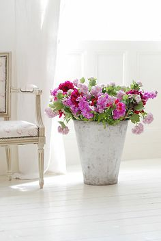 love the big pot with the lovely flowers - chair's not bad either...  :)