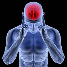 adrenal fatigue, adrenal system, norepinephrine, adrenalin, stress hormones