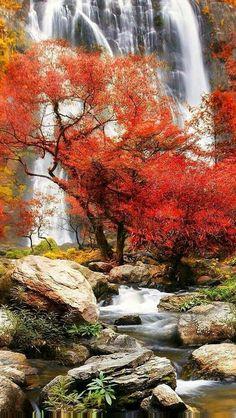 Beautiful World, Beautiful Places, Beautiful Pictures, Beautiful Monday, Fall Pictures, Nature Pictures, Beautiful Waterfalls, Beautiful Landscapes, Landscape Photography