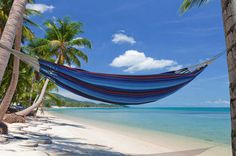 Everybody needs a hammock Iguana Single Hammock  £52 EMILYHANNAH LTD