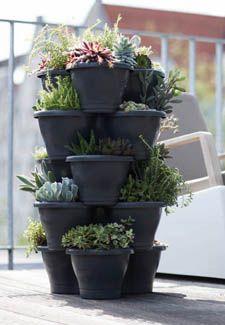 77 besten vertical garden Bilder auf Pinterest | Vertical gardens ...