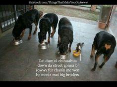 Iz got big broders