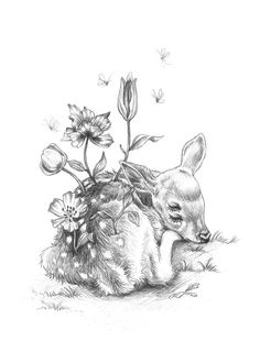 Floral Fawn art print by Julie Filipenko Fawn Tattoo, Deer Tattoo, Colouring Pages, Adult Coloring Pages, Sketch Inspiration, Beautiful Drawings, Beautiful Pictures, Animal Drawings, Pencil Drawings