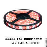 BANDA RGBW 5050 SMD ALB RECE IP65 Lead Boxes, Tape, Led, Bands, Duck Tape, Ribbon, Ice