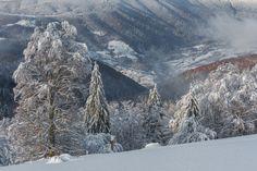 Winter clothes of nature (Misha Reme / Lviv / Ukraine) #NIKON D7100 #landscape #photo #nature