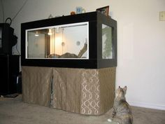 where to find a large reptile enclosure - Google Search