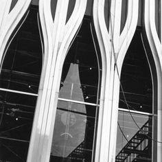 c729b56edd29 World Trade Center façade    Ward M. The façade of the World Trade Center