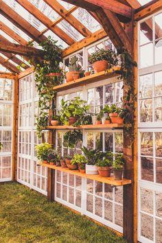 Diy Greenhouse Plans, Window Greenhouse, Backyard Greenhouse, Small Greenhouse, Greenhouse Wedding, Homemade Greenhouse, Portable Greenhouse, Greenhouse Shelves, Pallet Greenhouse