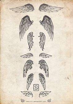 types of wings for tattoos
